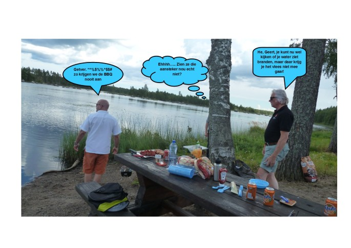 Zweedse BBQ01
