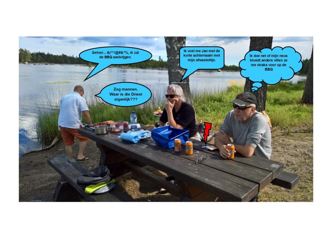 Zweedse BBQ04